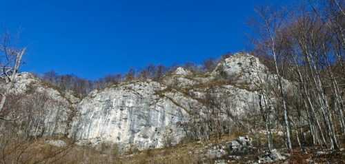Plezališče kotečnik