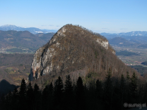 Krvavica (vir:wikipedia.org)