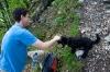 Miši se prikupi čisto vsakomur, čeprov baje ne mara psov:P
