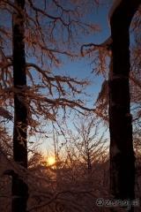 Jutranje sonce