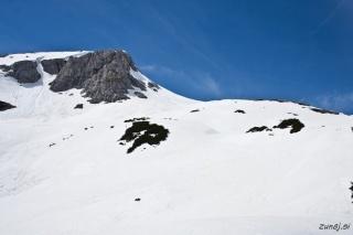 Debeli vrh in flanka