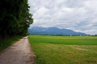 Pot ob Brdu
