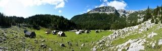 Planina laz in Kreda v ozadju