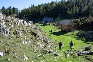 Prihod na planino Dedno polje