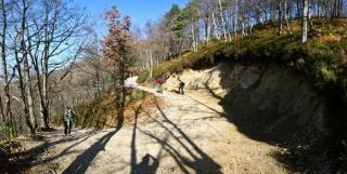 Proti plezališču