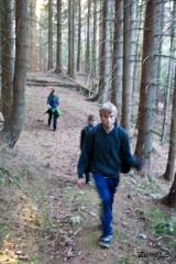 Sprehod skozi gozd