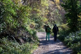 Proti plezališču Črni KAl