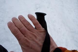 Ledene roke