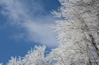 Sneg in nebo