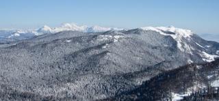 Kamniško Savinske Alpe v ozadju
