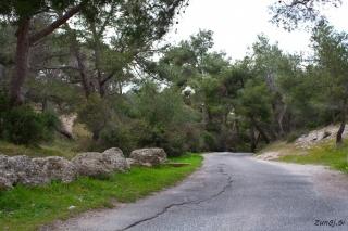Pot do plezališča