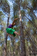 Nina pleza po drevesih