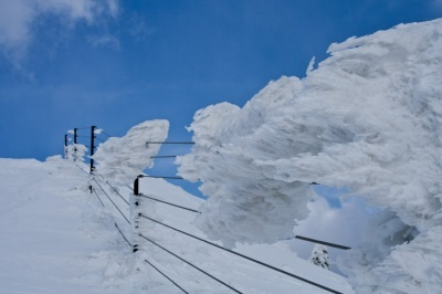 Ledene skulpture 2