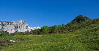 Zelena planina