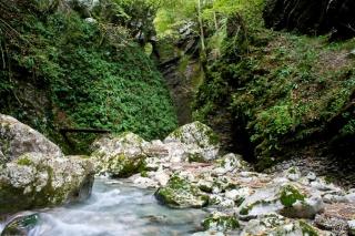 Dolina pred slapom