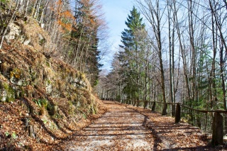 Vzpon proti Staremu Ljubelu
