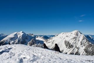 Na vrhu Begunjščice