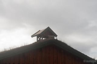 Ovca na strehi