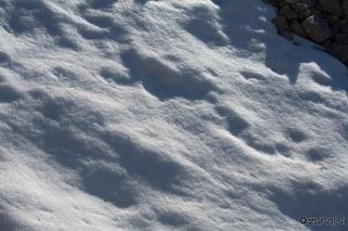 Smetki snega