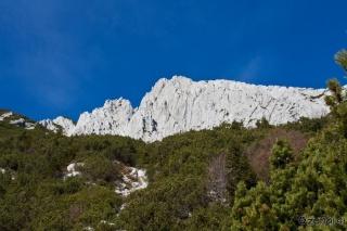Stena Novega vrha