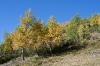 Jesen v hribih