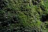 Stena nad slapom