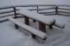 Sveži sneg