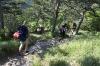 Spust v dolino Glinščica
