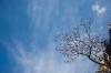 Plavo nebo