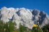 Alpska kulisa