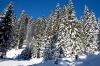 Jasno nebo in sveži sneg