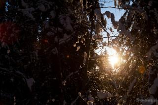 Vzhajajoče sonce