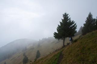 Pogled proti Kriški gori