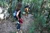 Spust do plezališča